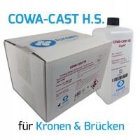 Einbettmasse für Kronen und Brücken COWA-Cast